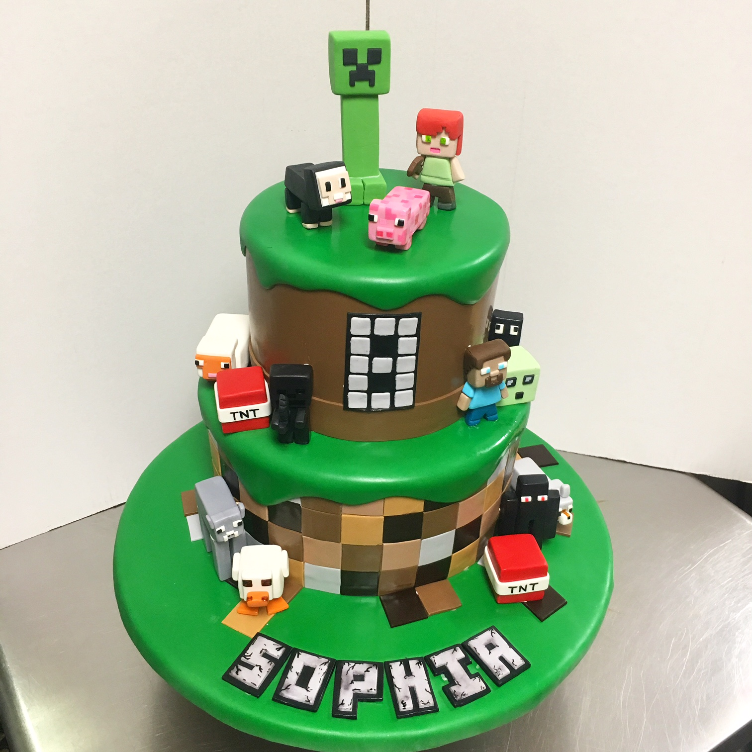 Minecraft Birthday Cake  Years Old